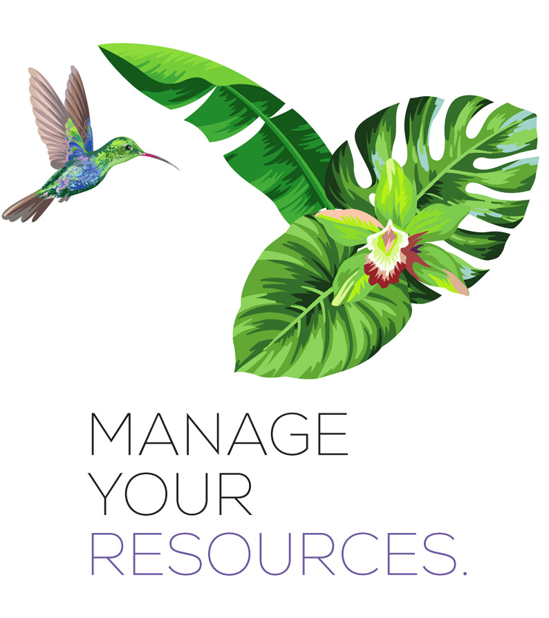 Manage your resources
